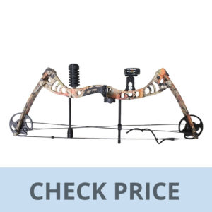 best compound bow