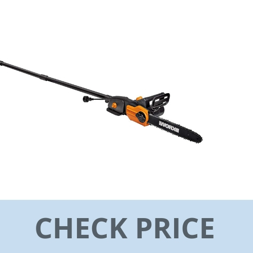 Top 10 Best Pole Saw Reviews